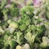 Broccoli Lasagna Roll Ups