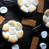 Mini Peanut Butter Chocolate S'mores Dip
