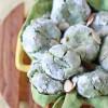 Green Tea Vanilla Bean Almond Crinkle Cookies