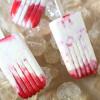 Raspberry Vanilla Bean Yogurt Popsicles