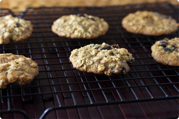 Oatmeal Raisin Sandwich Cookies {mind-over-batter.com}