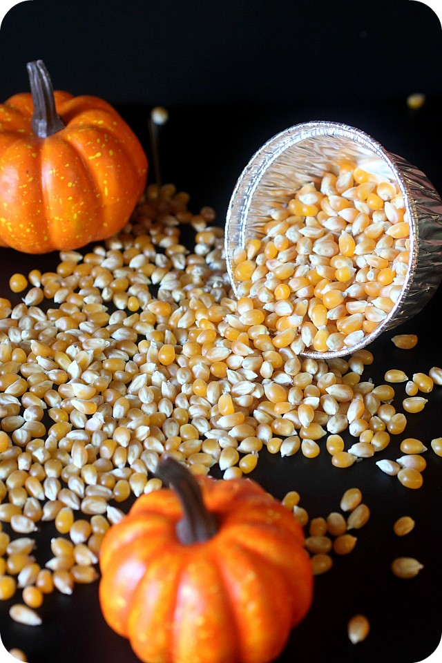 Pumpkin Spice Caramel Corn {mind-over-batter.com}