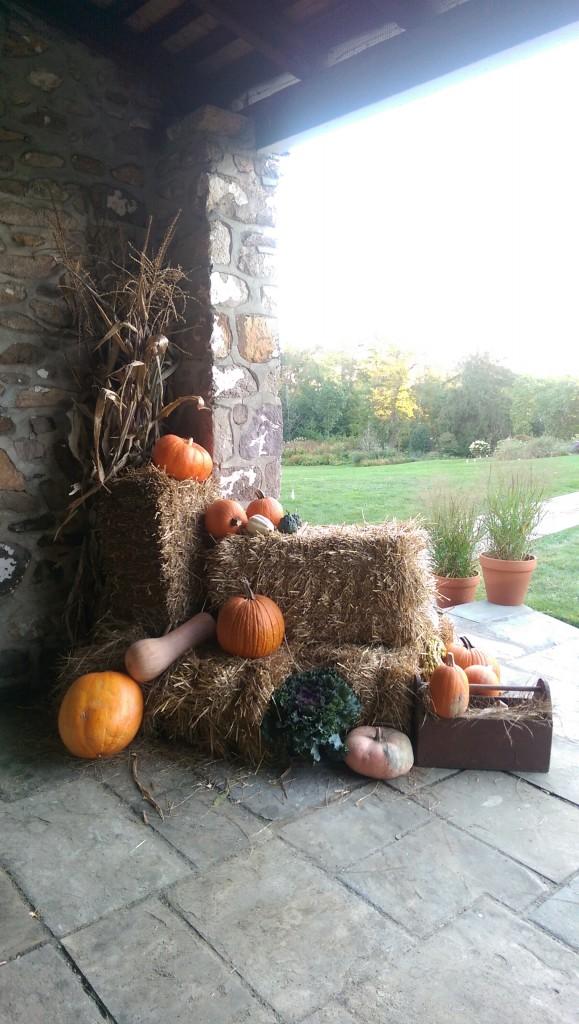 Big Harvest Potluck