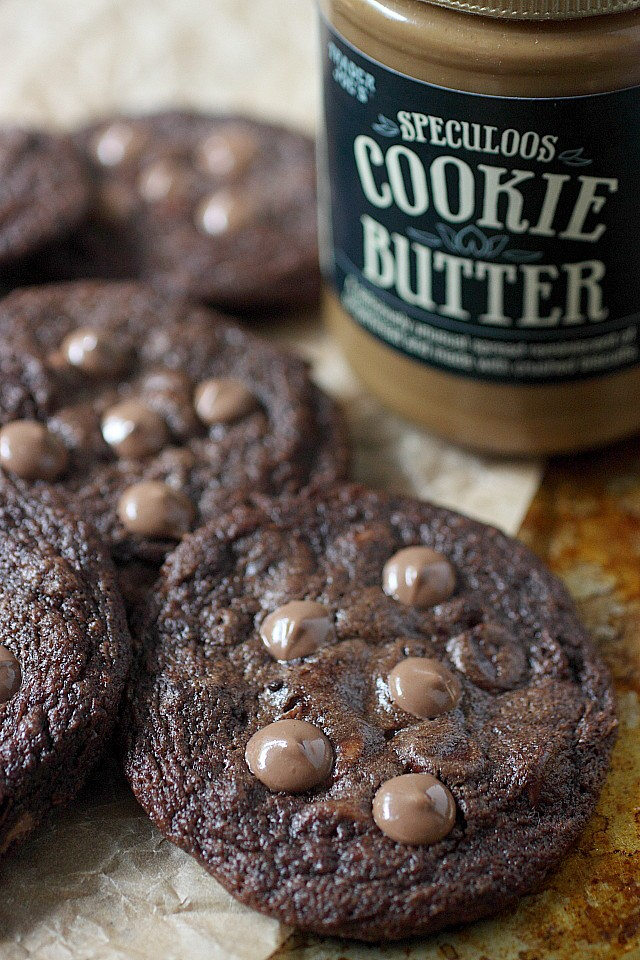 This gem of a cookie dough is generously combined with loads of speculoos cookie butter, unsalted butter, cocoa powder, and milk chocolate chips.  These Dark Cookie Butter Chocolate Chip Cookies are a giant leap from your regular ol' chocolate chip cookie. Believe it. www.mind-over-batter.com